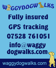 poster for waggy dog walks