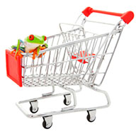 shopping trolley with reptile