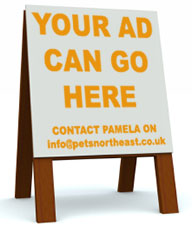 Your advert can go here